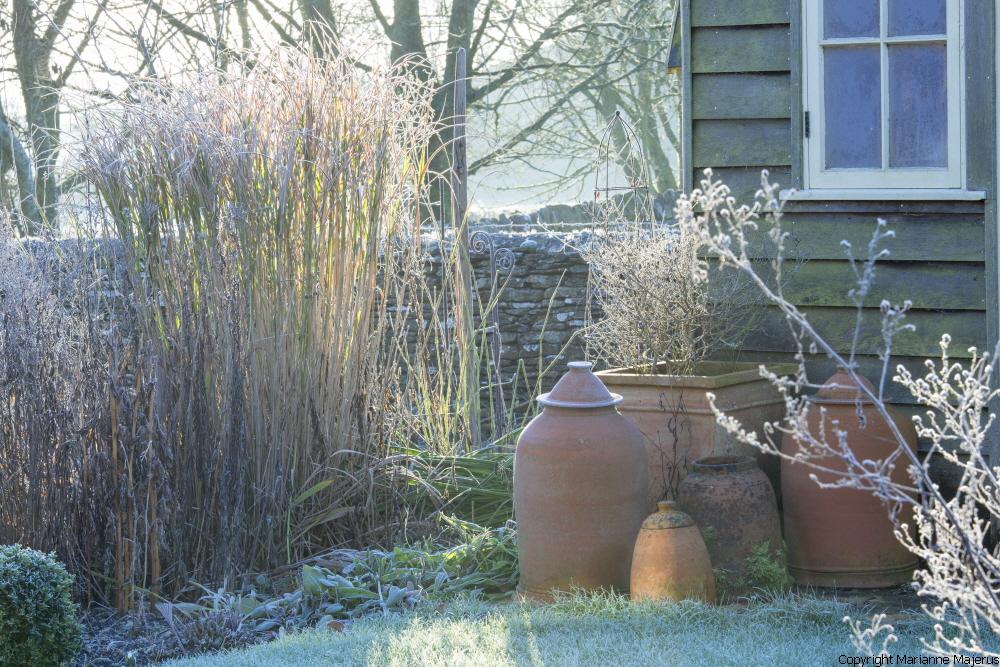 Winter image #1