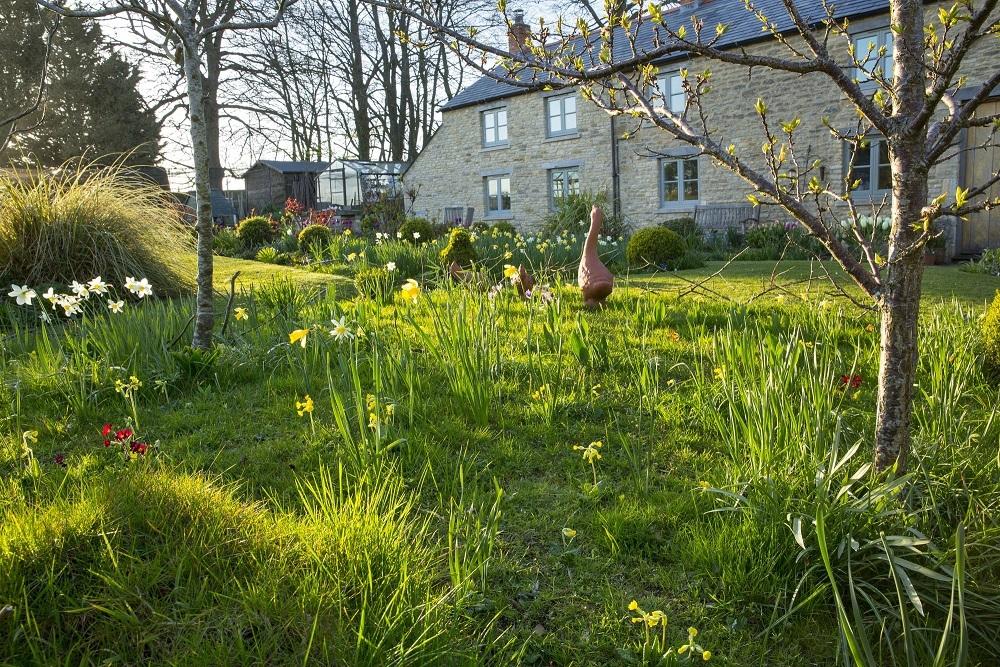Spring image #4