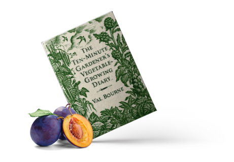 The Ten Minute Gardener's Vegetable Growing Diary image #1