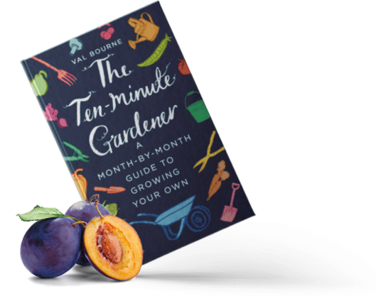 The Ten-Minute Gardener: A month-by-month guide to growing your own