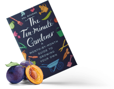 The Ten-Minute Gardener