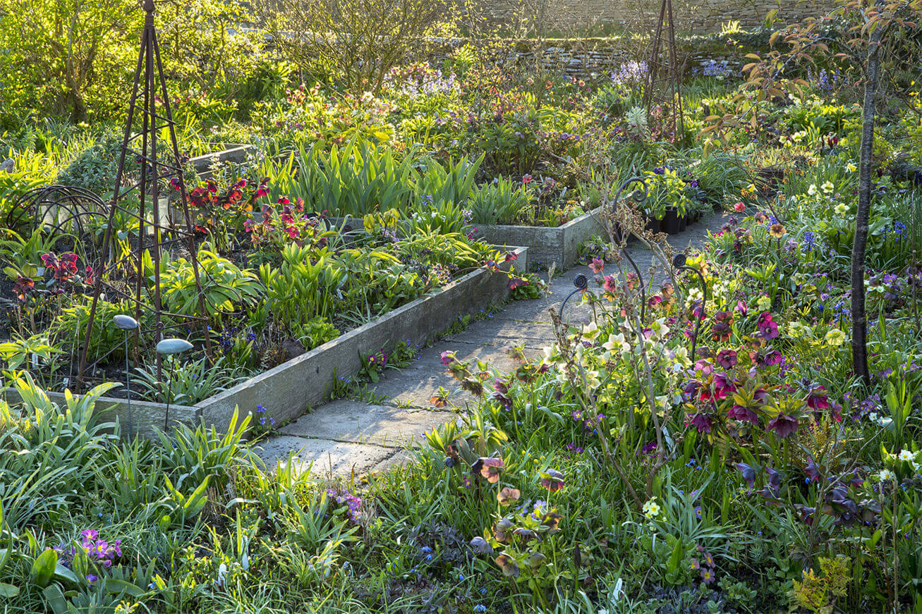 val bourne the natural gardener award winning garden writer lecturer organic gardener