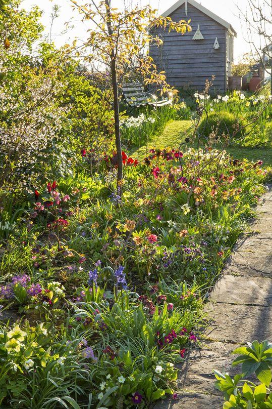 Spring image #8