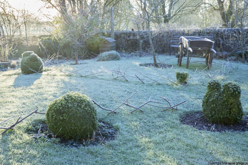 Winter image #6